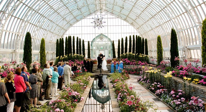 Como Park Zoo And Conservatory Weddings