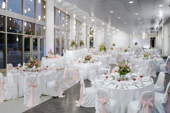 Embassy Suites By Hilton Usf Busch Gardens Weddings Tampa Bay Wedding