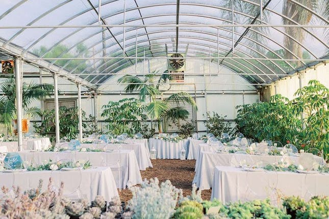 The Greenhouse At Plantenders Nursery